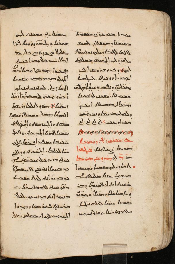 DIYR 335, f. 157v