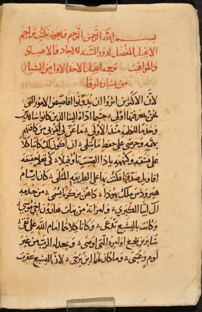 CCM 91, f. 19v