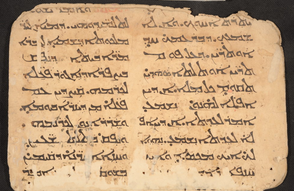 MBM 485, f. 6v. Mt 18:15-17, 20:1-3.